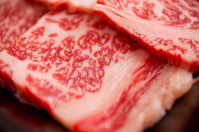 肉に替わる新タンパク源を探せ!将来の「タンパク質危機」に挑むフードテック企業《1》