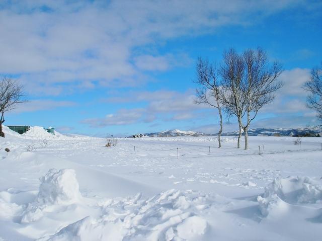 今日は何の日 1月25日は「日本最低気温を記録した日」