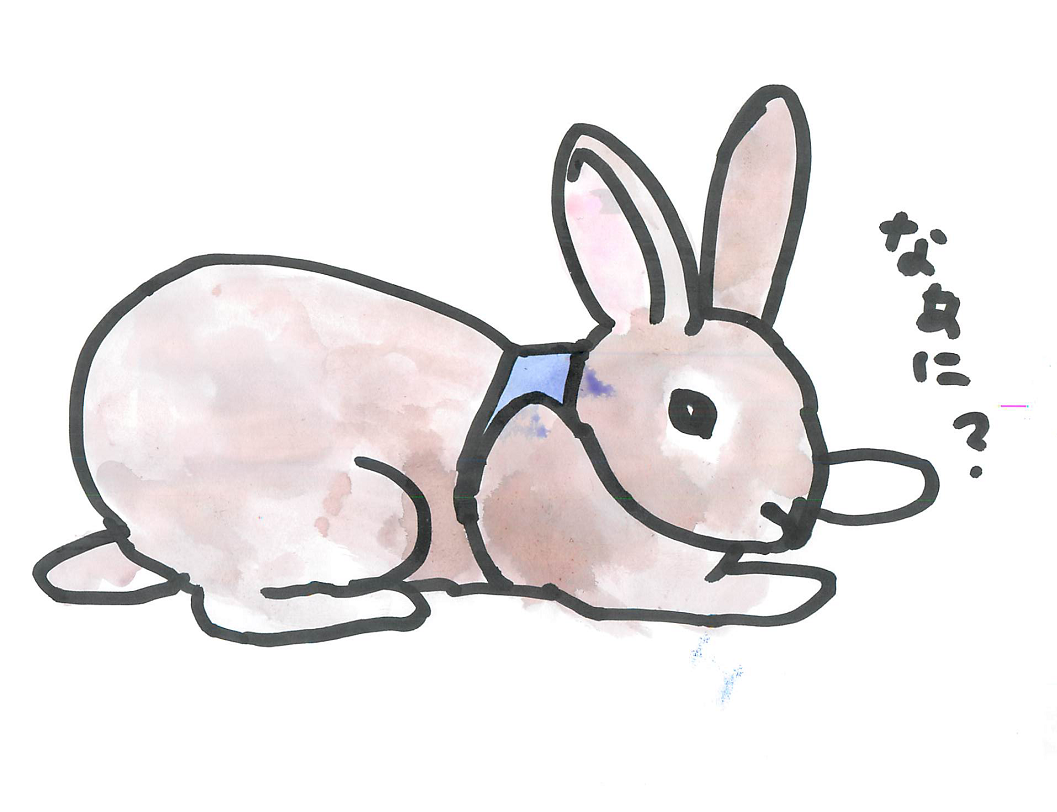 プロが教える!明日からウサギと暮らすため講座 「ウサギはお風呂に入れないですよね?」「入れられるわよ。○○ができれば」
