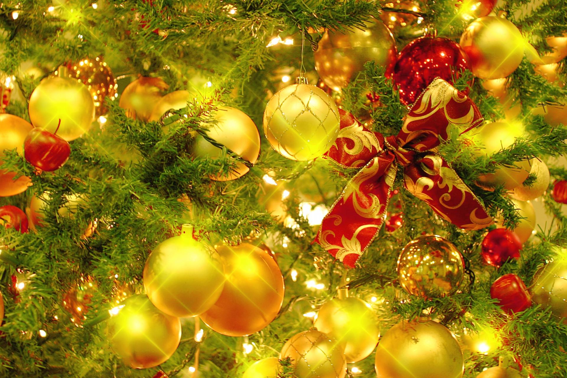 世界一のカネになる木に群がる植栽ヤクザ:クリスマスツリーと門松の闇