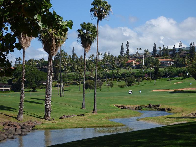 中高年のゴルフ離れが顕著。 若者はゴルフを始めるなら今がチャンス?