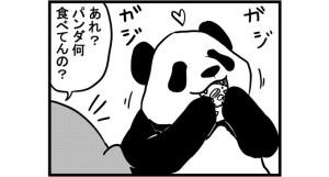 第689話 女流雀士とパンダ