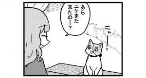 第802話 女流雀士と猫