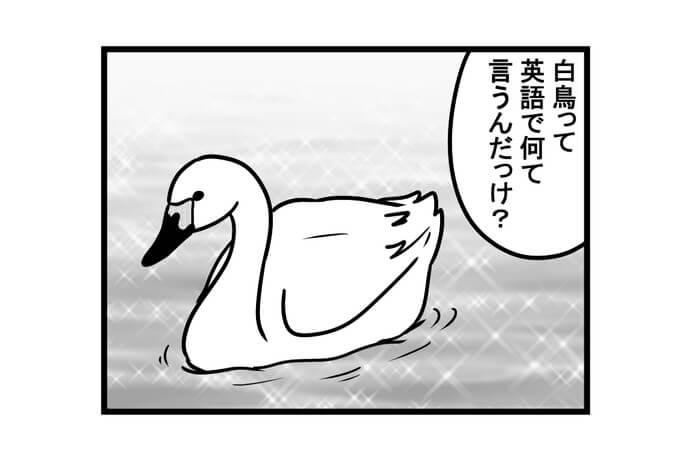 第1344話 女流雀士と白鳥