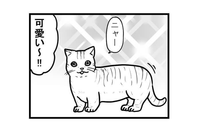 第1434話 女流雀士の子猫