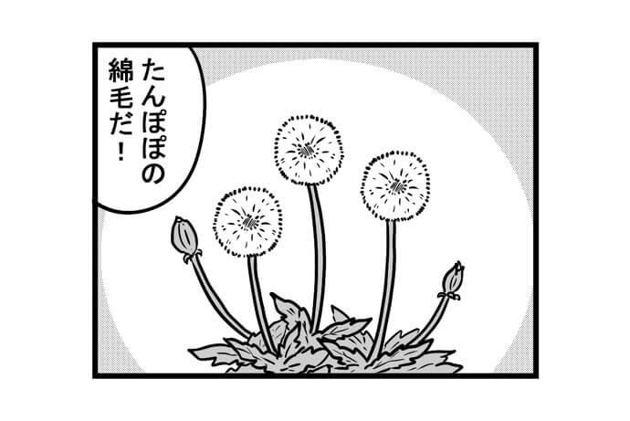 第1435話 女流雀士とたんぽぽ