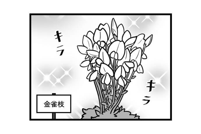 第1444話 女流雀士と花の名前