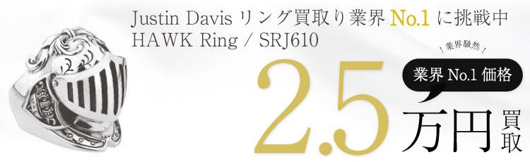 HAWK Ring ホークシルバーリング / SRJ610 2.5万買取