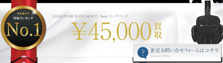 ALEXANDER WANG MARTI バッグパック 4.5万円買取 ライフ仙台店