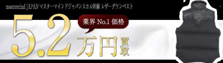ロッキーマウンテン mastermind JAPANマスターマインドジャパンスカル刺繍 レザーダウンベスト   ブランド買取ライフ