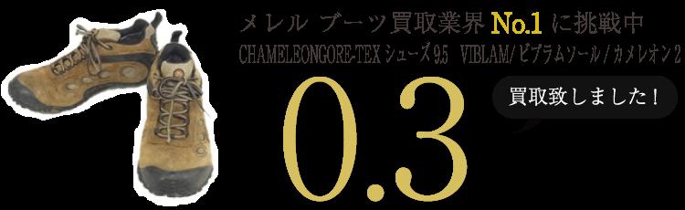 メレル ブーツ CHAMELEONGORE-TEXシューズ9.5 VIBLAM/ビブラムソール/カメレオン2  ブランド買取ライフ