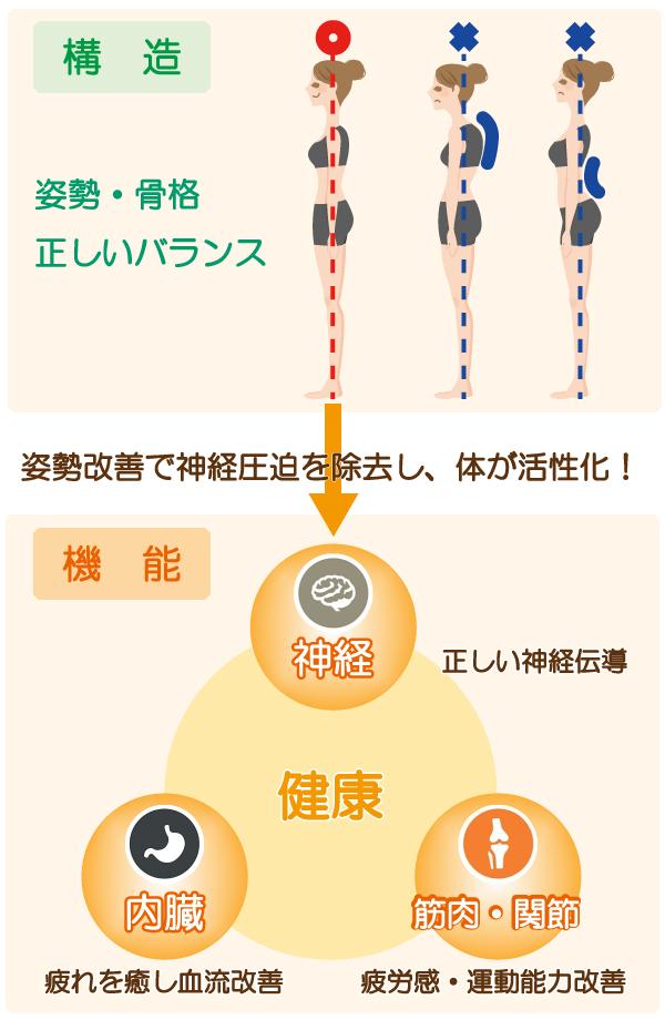 姿勢と機能の回復