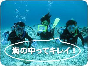 石垣の海で体験ダイビング