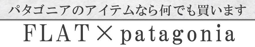 パタゴニアバナー