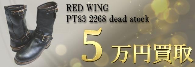 レッドウィング Pt83 5