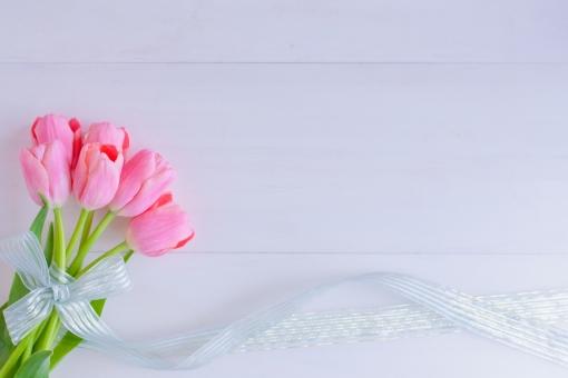 tulip 春 花 花束 ピンク リボン ブーケ 春の花 優しさ ふんわり ふわり 幸せ 幸福感 幸福 女性的 女子力 枠 壁紙 テクスチャ ホワイトスペース メッセージボード メッセージカード グリーティングカード ナチュラル ナチュラルテイスト ギフト プレゼント 気持ち 背景
