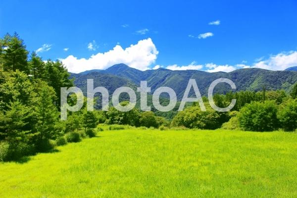 日本の夏 美しい山里1の写真