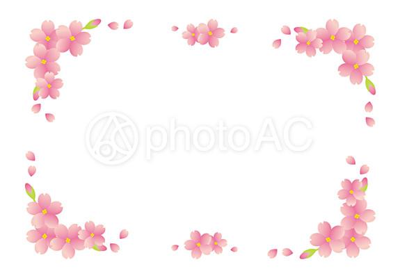 桜柄フレーム11|写真素材 ... : かわいい便せん : すべての講義