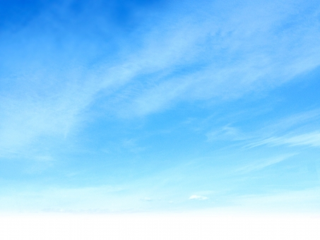空8の写真