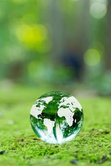 新緑と地球儀1の写真