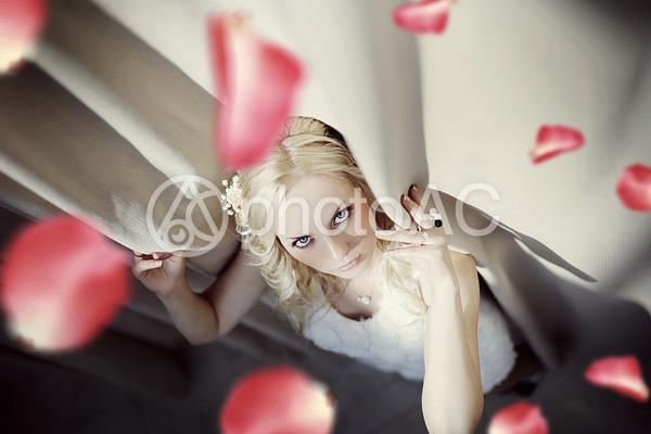 花びらと仰向けの女性2の写真