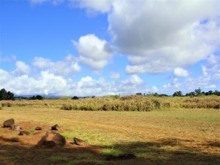 ハワイ(オアフ島)の写真