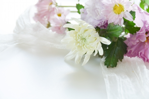 菊 供花 花束 リボン 仏事 花 白菊