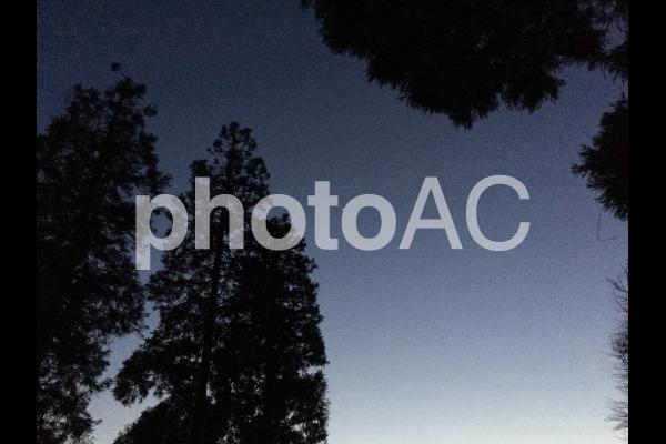 1番星の写真
