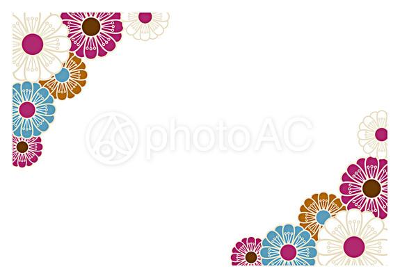 優美な花のフレーム10|写真 ...