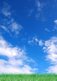 快晴の空【タテ】の写真
