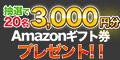 Amazonギフト券(3,000円分)が当たるプレゼントキャンペーン