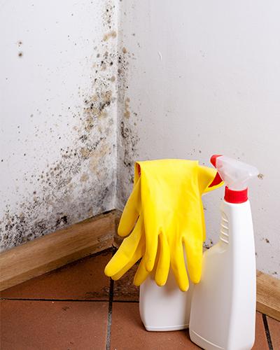 知っておきたい!トイレのカビをきれいに落とす方法と対策|定額リフォームのリノコ