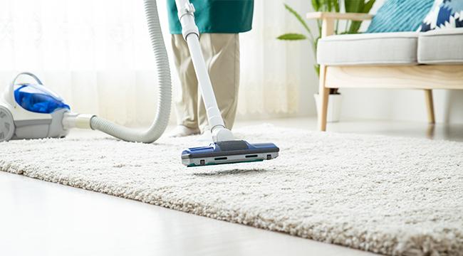 掃除のしにくいじゅうたんもキレイに