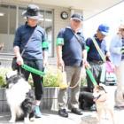 愛犬家だからこそ地元にくわしい! 犬と散歩しながら「わんわんパトロール」、福岡市でもスタート