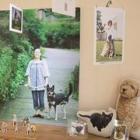 「こんなにかわいいんだ!」 宇都宮でsippo特別写真展「みんなイヌ、みんなネコ」開幕