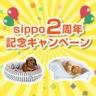 アンケートに答えてプレゼントをもらおう sippo2周年記念キャンペーン