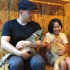 旅館の「猫庭」でのんびりしてニャ コンテナに保護猫たちの居場所 増築めざして寄付募集中