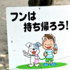 どうする?ポイ捨て、犬のフン害……観光地の柳川で問題化 啓発ステッカー配布へ