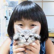 「猫は親友!」9歳の猫保護活動少女が思い描く夢