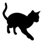 愛犬を捜していた?  福島の道路で高齢女性はねられ死亡 そばに猫の死体が