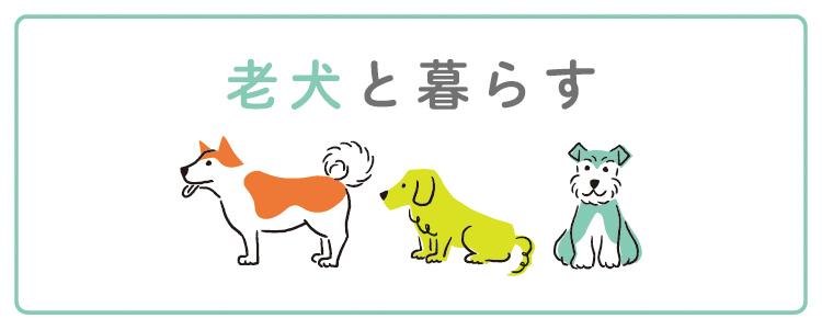 老犬と暮らす