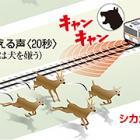 シカと犬の鳴き声で電車と接触防止! 鉄道総研がつきとめる