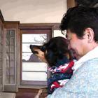 愛犬への思い書き込む絵馬、SNSで話題 全国から参拝客