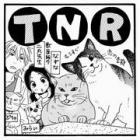 TNRって何? 教えて!しっぽ情報局 vol.28