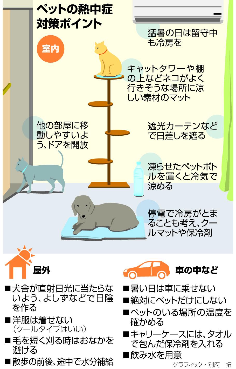 ペットの熱中症対策ポイント<グラフィック・別府拓>
