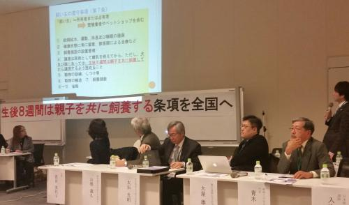 衆議院第2議員会館で2月19日に開かれた「札幌市動愛条例の『幼い犬猫守る条項』を応援する緊急院内集会」