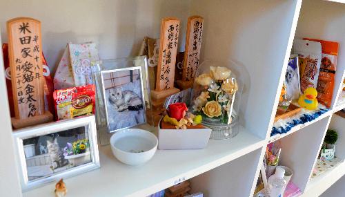 棚に設けられた個別の納骨スペース。家族が思い思いの品を飾る=能美市