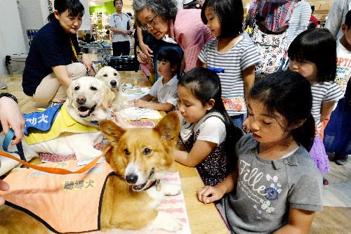 補助犬の仕事をPRする犬たちに触れる子どもたち=5月22日、千葉県市川市