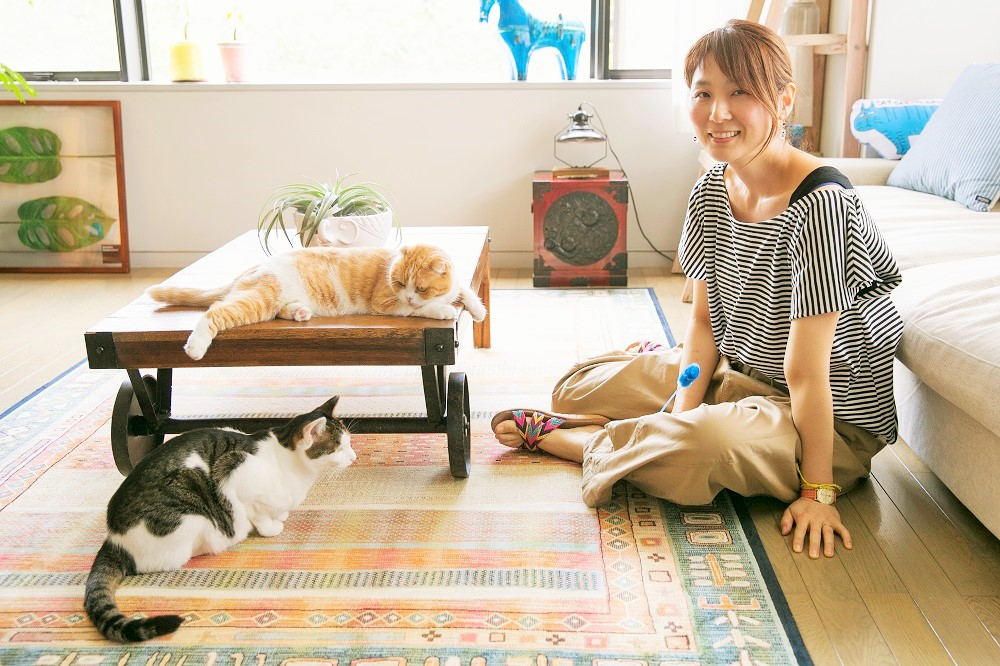 津田蘭子さんと愛猫のまーそんさん(机の上)、おはなちゃん