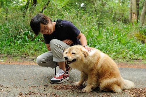 ほめる時は犬が喜ぶことをしよう=大阪府能勢町